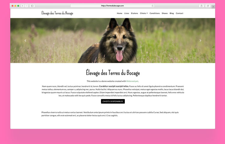 Make your Breeder Website